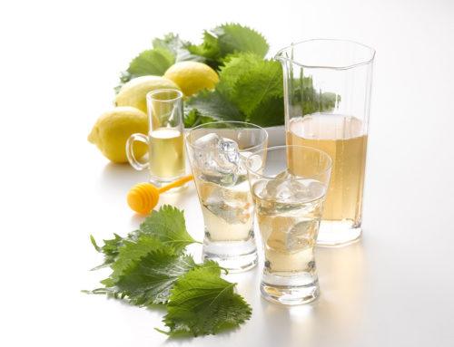 一日一杯健康大葉ジュース