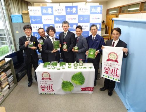 豊川市産の大葉が「とよかわブランド」に認定されました